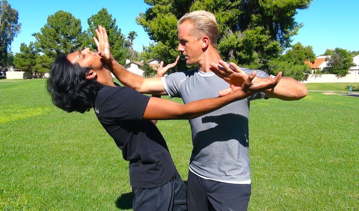 Difference between Tai Chi and Wing Chun