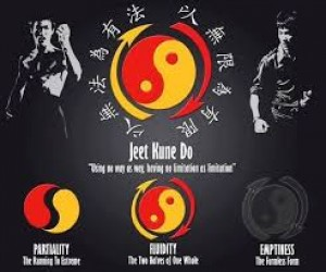 JKD Martial Arts!! What is Jeet Kune Do