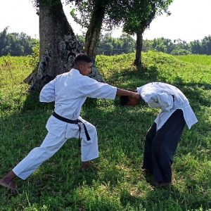 Martial Arts techniques and training