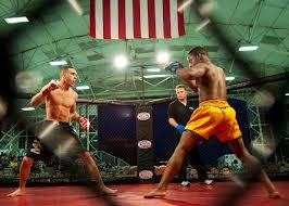 Mixed Martial Arts Brazilian Jiu Jitsu Muay Thai Training Tips