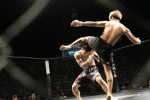 MMA and Ultimate Cage Fighting UFC Mixed Martial Arts