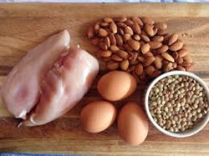 Protein is important for building good muscle mass