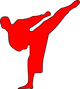 Tae Kwon Do and Karate Martial arts description