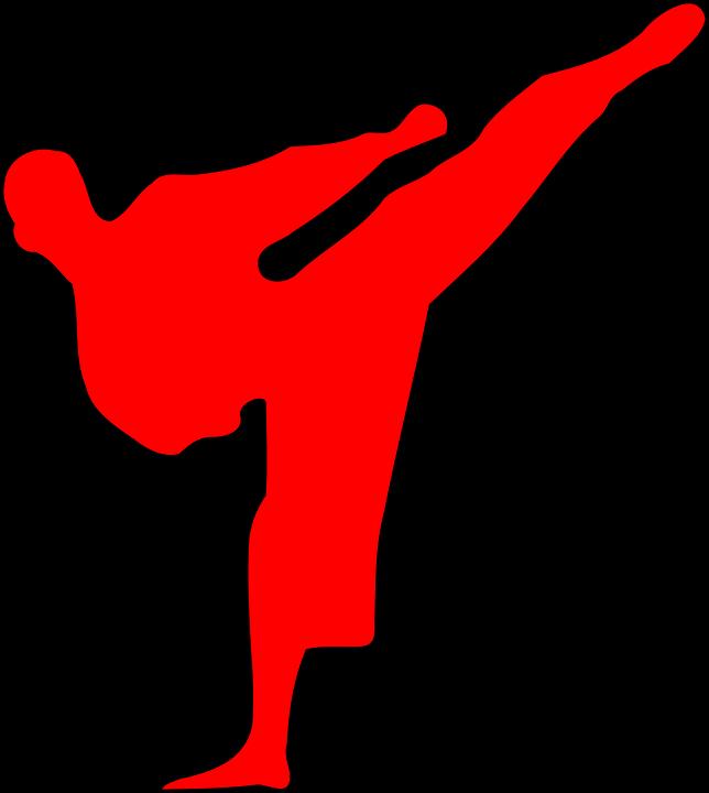 Tae Kwon Do and Karate Martial arts description