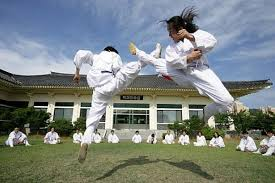 Tae Kwon Do History Korean Martial Arts