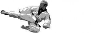Tae Kwon Do: Todays Martial Art