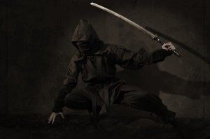 The essence of ninjutsu Ninja martial art