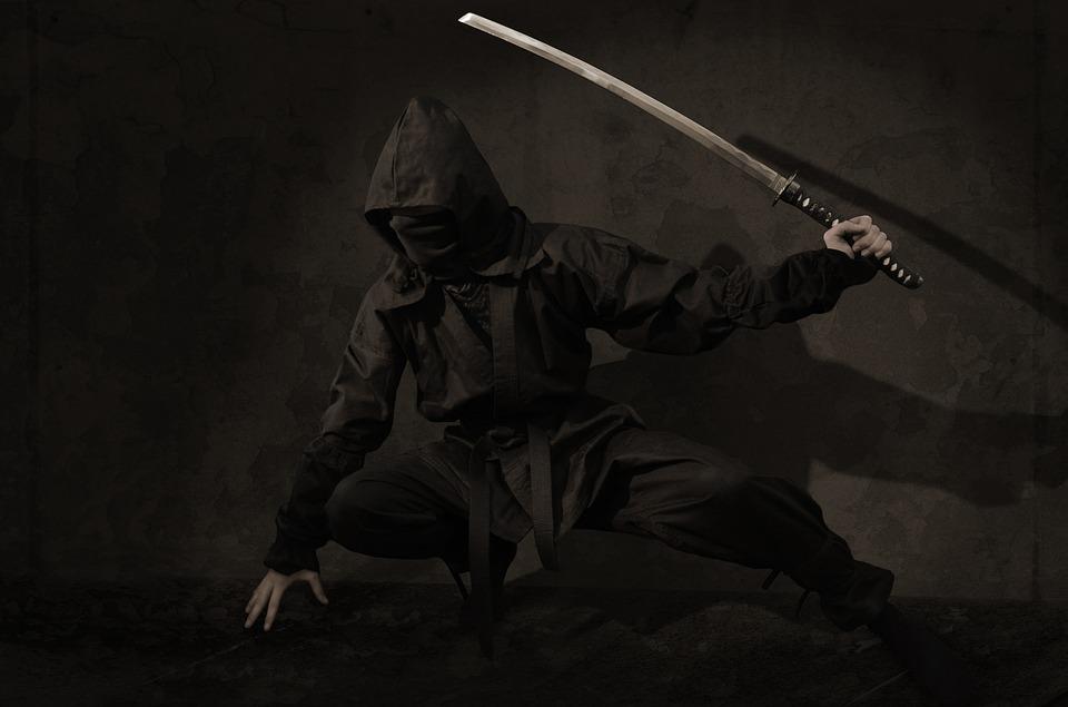 The essence of ninjutsu Ninja martial art