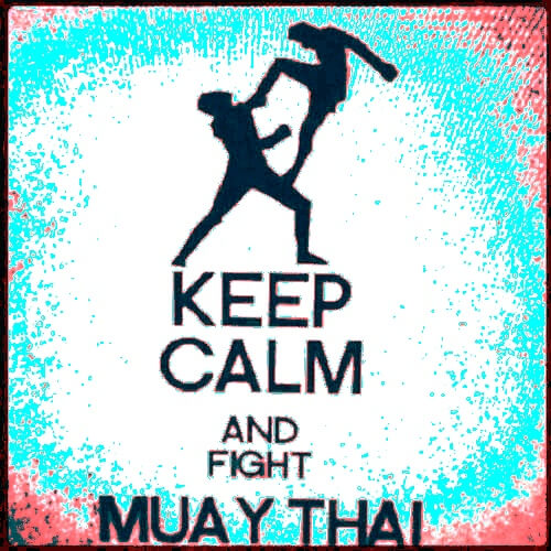 The Fight - Muay Thai