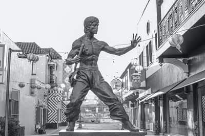 bruce lee bxrank jeet kune do jkd martial art article blog