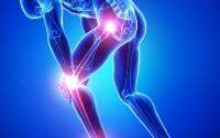 yoga health benefits prevent cartilage breakdown improve fit