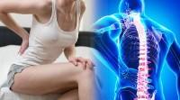 prevents back pain benefits of yoga and pranayama bxrank