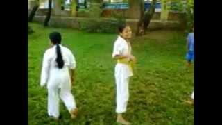 Gymnastic Practice Karate | Martial Art